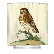 Ominous Owl Shower Curtain by Philip Ralley