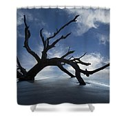 On A Misty Morning Shower Curtain by Debra and Dave Vanderlaan