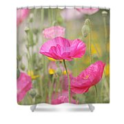 On A Summer Day - Pink Poppy Shower Curtain by Kim Hojnacki