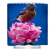 On Guard Shower Curtain by Jean Noren
