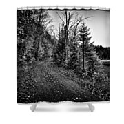 On the way to Cary Lake Shower Curtain by David Patterson