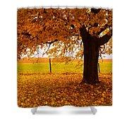 One Autumn Tree Shower Curtain by Terri Gostola