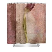 One - s03et03 Shower Curtain by Variance Collections