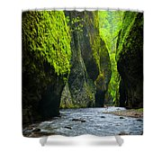 Oneonta River Gorge Shower Curtain by Inge Johnsson