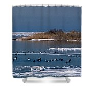 Open Water Shower Curtain by Skip Willits