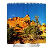 Orange Foreground A Blue Blue Sky  Shower Curtain by Jeff Swan