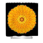 Orange Nasturtium Flower Mandala Shower Curtain by David J Bookbinder