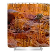 Orange Rock Formation Shower Curtain by Jeff Swan
