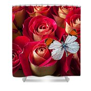 Orange Tip Butterfly Shower Curtain by Garry Gay