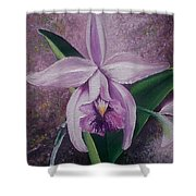 Orchid Lalia Shower Curtain by Karin  Dawn Kelshall- Best