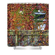 Over The Back Fence Shower Curtain by Paul W Faust -  Impressions of Light