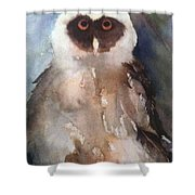 Owl Shower Curtain by Sherry Harradence