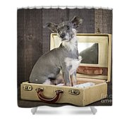 Packed And Ready To Go Shower Curtain by Edward Fielding