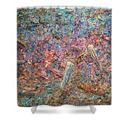 Paint Number 37 Shower Curtain by James W Johnson