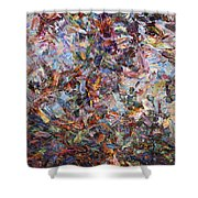 Paint Number 42 Shower Curtain by James W Johnson