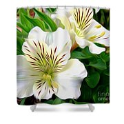 Painterly Alstroemeria Shower Curtain by Kaye Menner