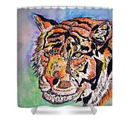 Paradise Dream Shower Curtain by Crystal Hubbard