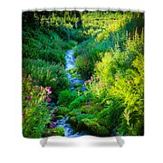 Paradise Stream Shower Curtain by Inge Johnsson