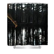 Paranormal Activity Shower Curtain by Donna Blackhall