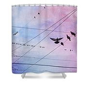 Party Line Shower Curtain by Amy Tyler