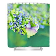 Pastel Buds Shower Curtain by Kaye Menner