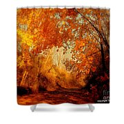 Path Of Gold Shower Curtain by Tami Quigley