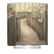 Pathway Shower Curtain by Melissa Petrey