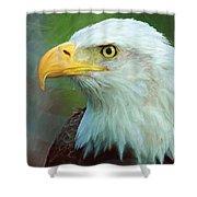 Patriot Shower Curtain by Heidi Smith