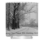 Peaceful Holiday Card Shower Curtain by Carol Groenen