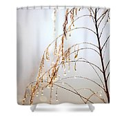 Peaceful Morning Shower Curtain by Carol Groenen