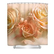 Peach Roses In The Mist Shower Curtain by Jennie Marie Schell