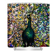 Peacock Shower Curtain by American School