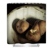 Pear Love Shower Curtain by Amy Weiss