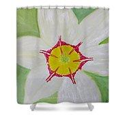 Pearl White Flower Shower Curtain by Sonali Gangane