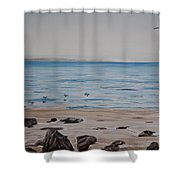 Pelicans At El Capitan Shower Curtain by Ian Donley