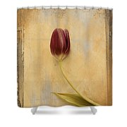 Penchant Naturel 03bt03c Shower Curtain by Variance Collections