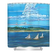 Perfection Shower Curtain by Bev Veals