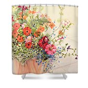 Petunias Lobelias Busy Lizzies and Fuschia in a Terracotta Pot Shower Curtain by Joan Thewsey