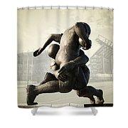 Philadelphia Eagles Shower Curtain by Bill Cannon