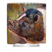 Pig Shower Curtain by David Stribbling