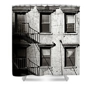 Pigeon Shower Curtain by Dave Bowman