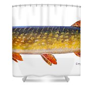 Pike Shower Curtain by Carey Chen