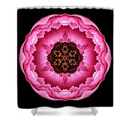 Pink Peony Flower Mandala Shower Curtain by David J Bookbinder