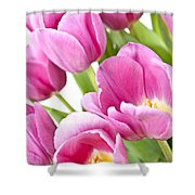 Pink Tulips Shower Curtain by Elena Elisseeva