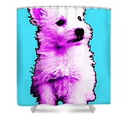 Pink Westie - West Highland Terrier Art By Sharon Cummings Shower Curtain by Sharon Cummings