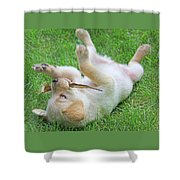 Playful Yellow Labrador Retriever Puppy Shower Curtain by Jennie Marie Schell
