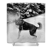Playing in the Snow Shower Curtain by Carol Groenen