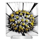 Pollen  Shower Curtain by Steve Taylor