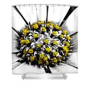Pollen  Shower Curtain by Steve Taylor