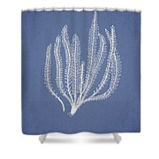 Polypodium Fuscatum Shower Curtain by Aged Pixel
